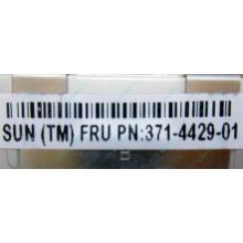 Серверная память SUN (FRU PN 371-4429-01) 4096Mb (4Gb) DDR3 ECC в Павловском Посаде, память для сервера SUN FRU P/N 371-4429-01 (Павловский Посад)